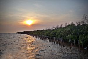 Bang-Pu-Recreation-Centre-Samut-Prakan-Thailand-06.jpg
