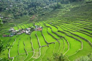 Batad-Rice-Terraces-Ifugao-Philippines-006.jpg