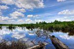 Bera-Lake-Pahang-Malaysia-001.jpg