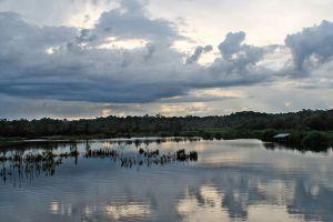 Bera-Lake-Pahang-Malaysia-002.jpg