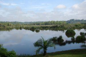 Bera-Lake-Pahang-Malaysia-003.jpg