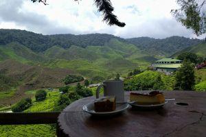 Bharat-Plantation-Cameron-Highlands-Malaysia-002.jpg