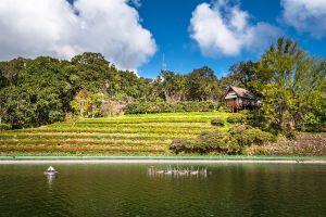 Bhubing-Rajanives-Palace-Chiang-Mai-Thailand-06.jpg