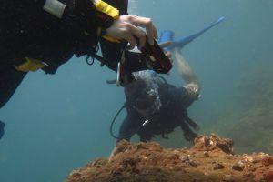 Blue-Coral-Diving-Hoi-An-Vietnam-004.jpg