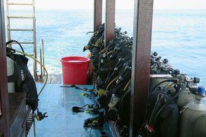 Blue-Coral-Diving-Hoi-An-Vietnam-006.jpg