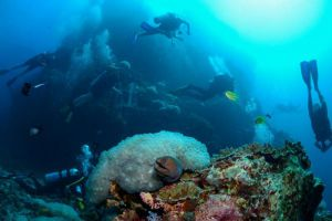 Blue-Planet-Divers-Lanta-Krabi-Thailand-002.jpg