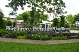 Botanic-Gardens-Singapore-001.jpg