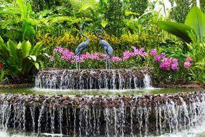 Botanic-Gardens-Singapore-004.jpg