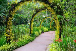 Botanic-Gardens-Singapore-005.jpg