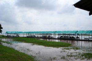 Bung-Boraphet-Nakhon-Sawan-Thailand-004.jpg