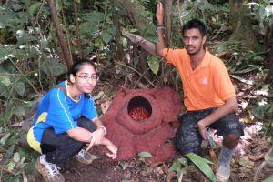 CS-Travel-Tours-Cameron-Highlands-Malaysia-004.jpg