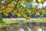 Cha-Am-Forest-Park-Phetchaburi-Thailand-03.jpg