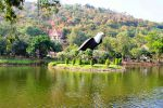 Chainat-Bird-Park-Thailand-001.jpg