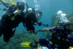 Cham-Island-Dive-Center-Hoi-An-Vietnam-001.jpg