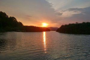 Chini-Lake-Pahang-Malaysia-001.jpg