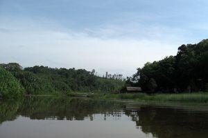 Chini-Lake-Pahang-Malaysia-004.jpg