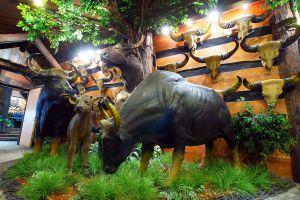 Chokchai-Museum-Pathumthani-Thailand-03.jpg