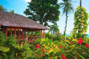 Coral-Bay-Resort-Spa-Samui-Thailand-Garden.jpg