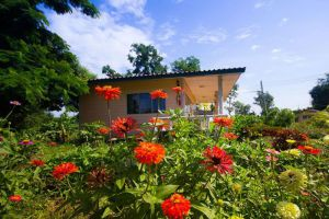 Country-Lake-Nature-Lodge-Hotel-Nakhon-Sawan-Thailand-Garden.jpg