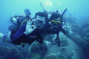Crystal-Dive-Koh-Tao-Thailand-004.jpg