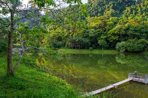 Cuc-Phuong-National-Park-Ninh-Binh-Vietnam-009.jpg