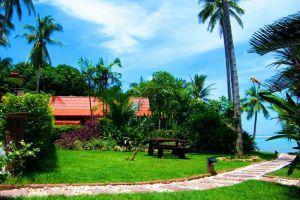 Cyana-Beach-Resort-Koh-Phangan-Thailand-Garden.jpg
