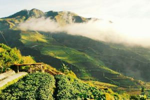 Dieng-Volcanic-Complex-Central-Java-Indonesia-005.jpg