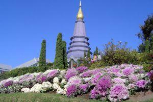 Doi-Inthanon-National-Park-Chiang-Mai-Thailand-005.jpg