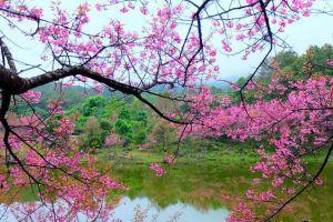 Doi-Khun-Mae-Ya-Mae-Hong-Son-Thailand-01.jpg