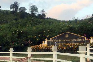 Doi-Mae-Ho-Mae-Hong-Son-Thailand-01.jpg