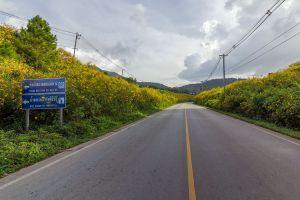 Doi-Mae-Ho-Mae-Hong-Son-Thailand-02.jpg
