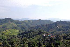 Doi-Mae-Salong-Chiang-Rai-Thailand-04.jpg