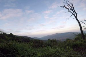 Doi-Phu-Kha-National-Park-Nan-Thailand-001.jpg