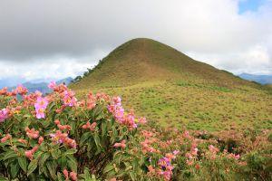 Doi-Pui-Luang-Mae-Hong-Son-Thailand-03.jpg