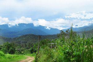 Doi-Suthep-Doi-Pui-National-Park-Chiang-Mai-Thailand-001.jpg