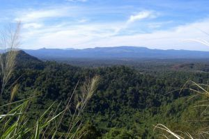 Dong-Ampham-National-Biodiversity-Conservation-Area-Attapeu-Laos-001.jpg