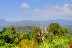 Dong-Ampham-National-Biodiversity-Conservation-Area-Attapeu-Laos-002.jpg