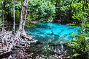 Emerald-Pool-Krabi-Thailand-002.jpg