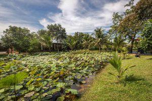 Encore-Angkor-Villa-Residence-Siem-Reap-Cambodia-Pond.jpg