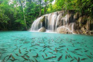 Erawan-National-Park-Kanchanaburi-Thailand-002.jpg