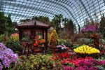 Flower-Dome-Singapore-001.jpg