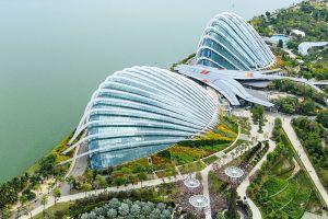 Flower-Dome-Singapore-002.jpg