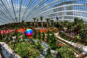 Flower-Dome-Singapore-004.jpg