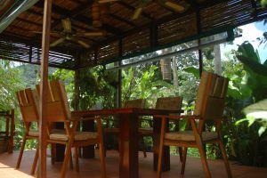Frog-Catfish-Restaurant-Krabi-Thailand-004.jpg