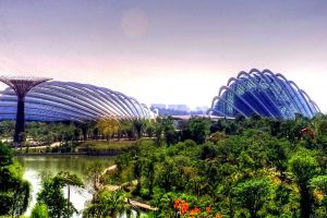 Gardens-by-the-Bay-Singapore-003.jpg