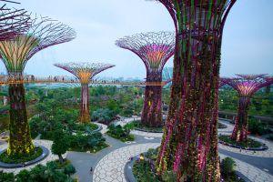Gardens-by-the-Bay-Singapore-005.jpg