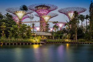 Gardens-by-the-Bay-Singapore-008.jpg