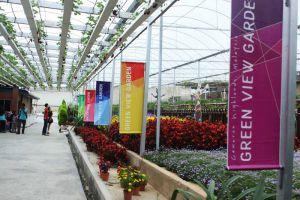 Green-View-Garden-Restaurant-Cameron-Highlands-Malaysia-002.jpg