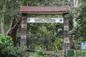 Gunung-Leuser-National-Park-Aceh-Indonesia-001.jpg