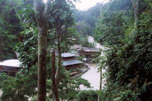 Gunung-Leuser-National-Park-Aceh-Indonesia-002.jpg